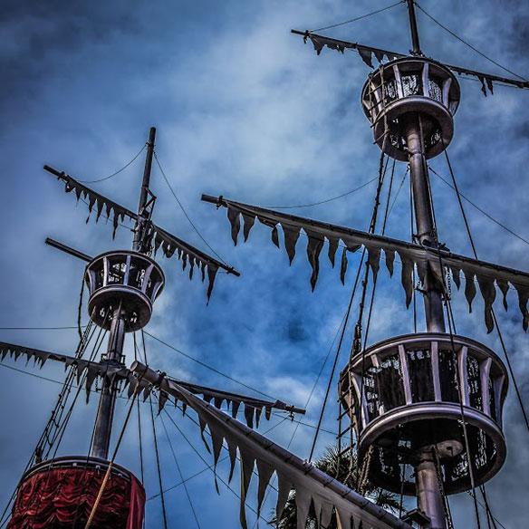 ayurkunas_crows_nests_584
