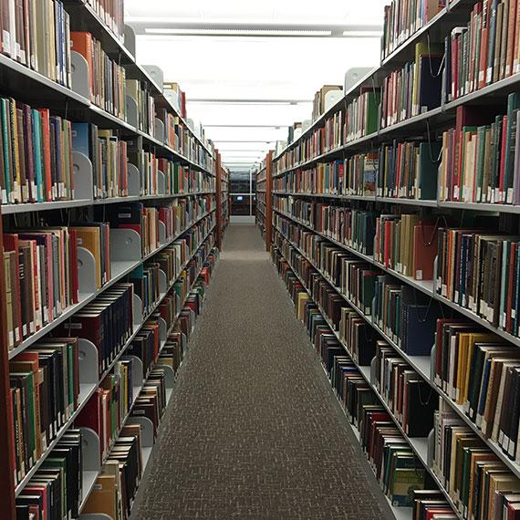 diana_zeineddine_library_1215_570