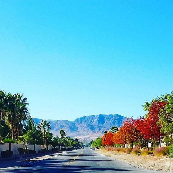 emendre_desert_fall_570