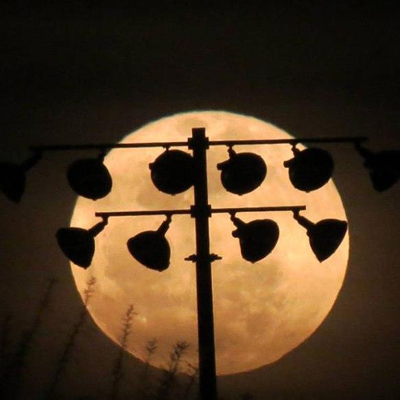 jmiller_full_moon_lights_600