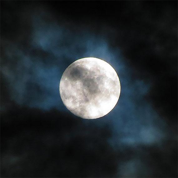 jmiller_harvest_moon_570