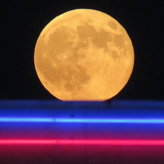jmiller_neon_moon_570
