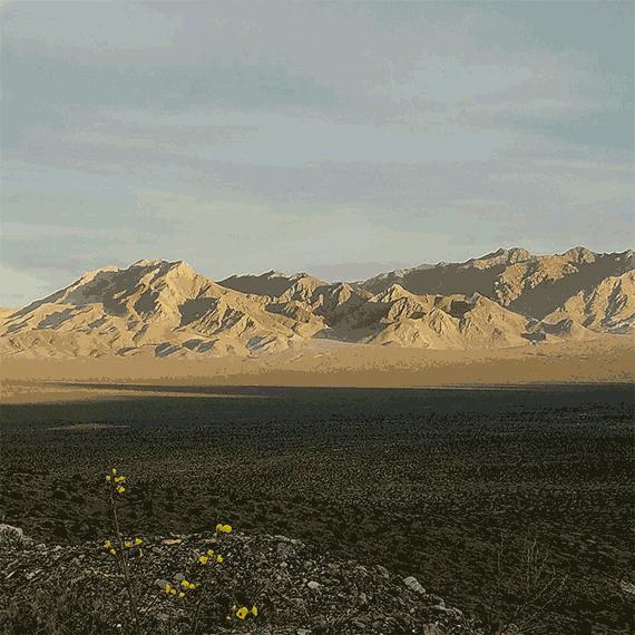 sdouglas_desert_landscape_570