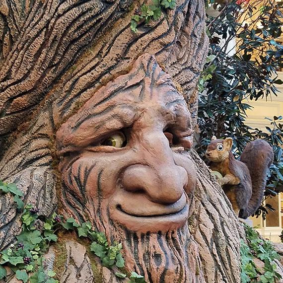 sdouglas_tree_face_conservatory