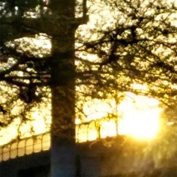 sdouglas_urban_sunset_570