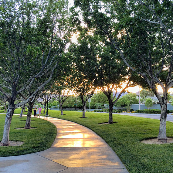 garden_parks_summerlin-0676_2_570