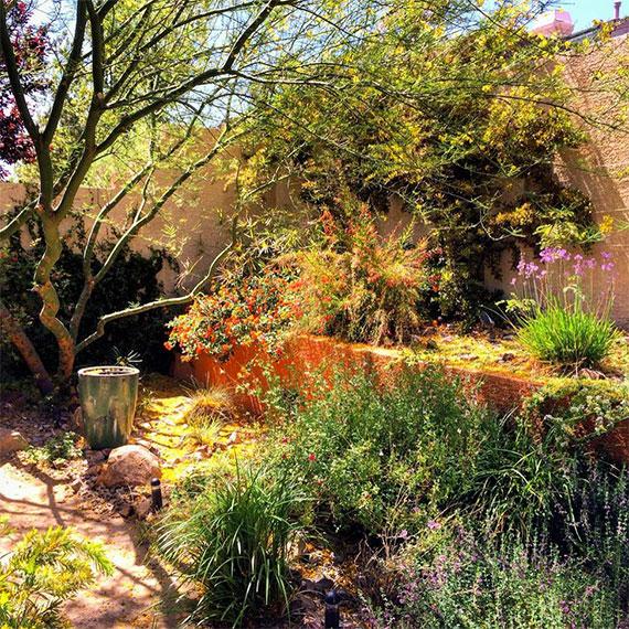 las_vegas_garden_570