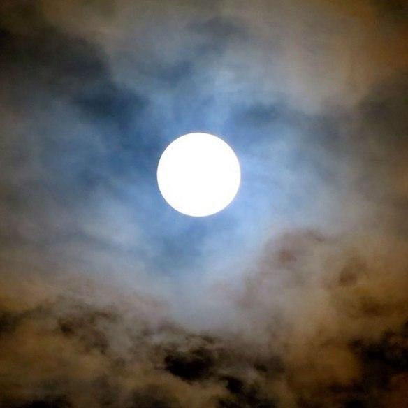 jmiller_wolf_moon_570