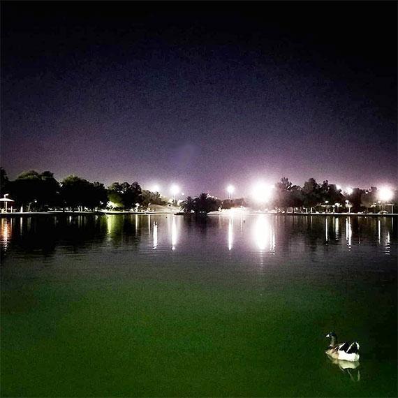 sdouglas_sunset_park_570