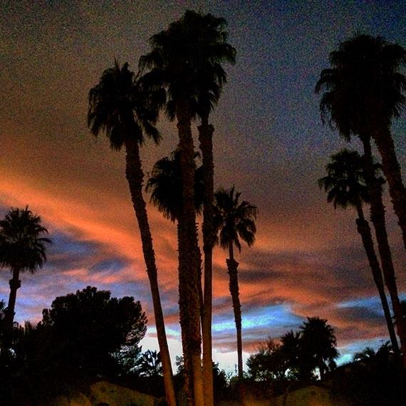 palm_sunset_4268_570