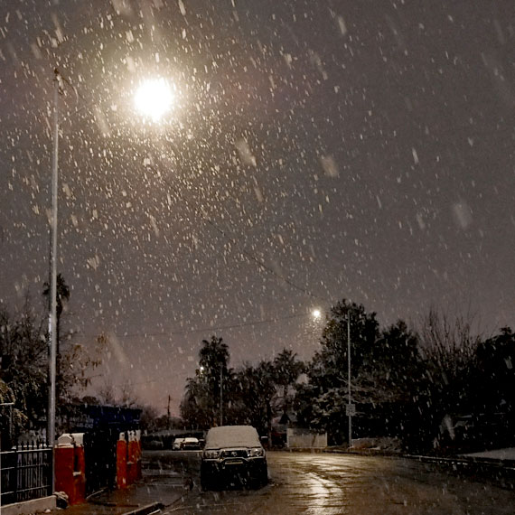 dawson_park_snowstorm_570