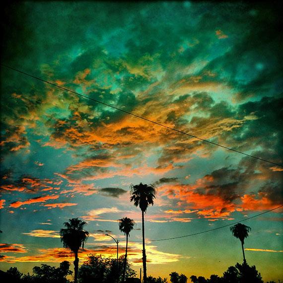 palms_sunset_5084_570