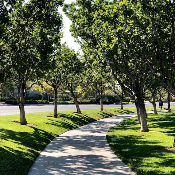 dogwalkers_view_gardens_park_7481_570