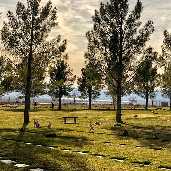 veterans_memorial_cemetery_570