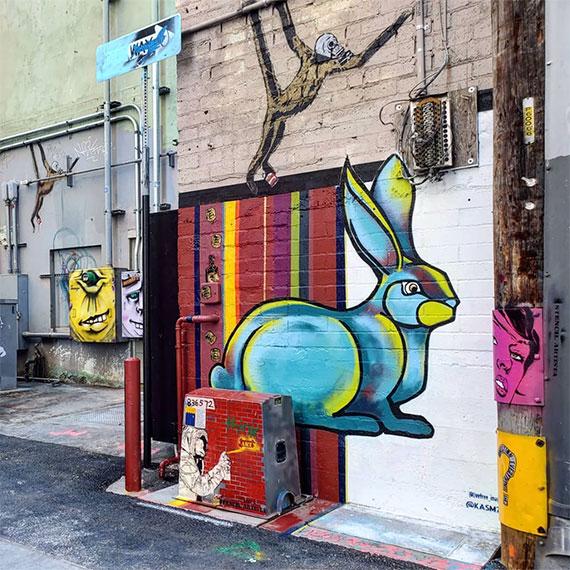 sdouglas_arts_factory_rabbit_570
