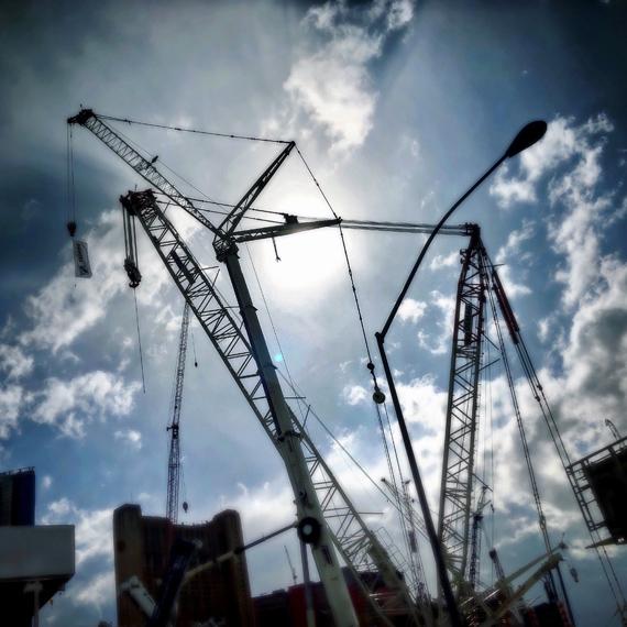 Cranes_570